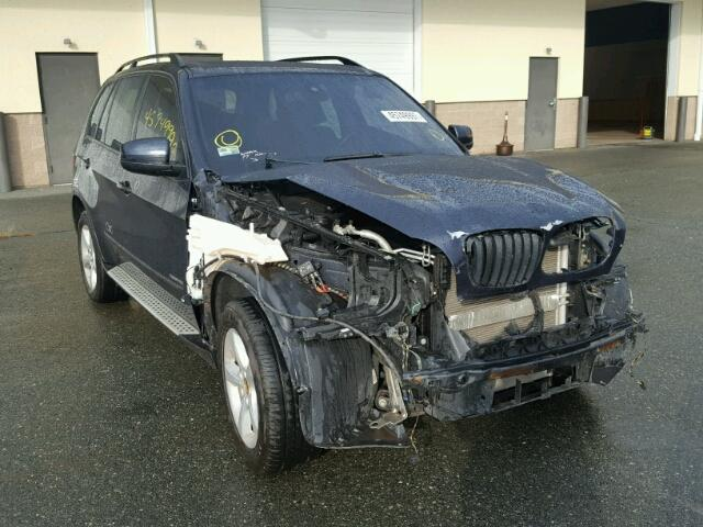 5UXFE43569L271083 - 2009 BMW X5 XDRIVE3 BLUE photo 1