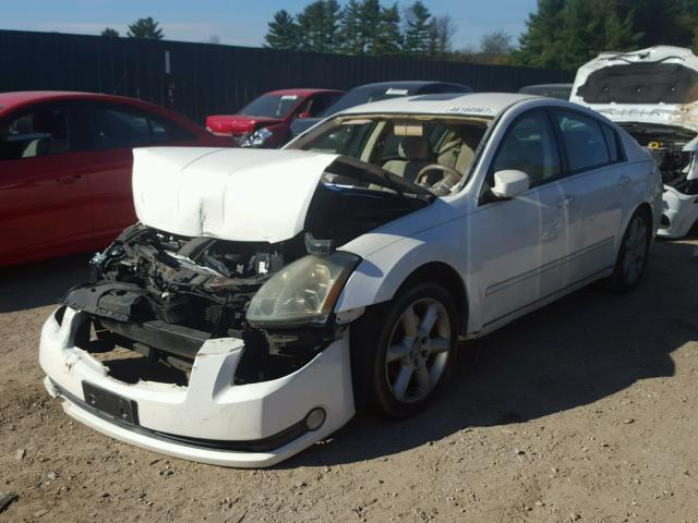 1N4BA41E74C906714 - 2004 NISSAN MAXIMA SE WHITE photo 2