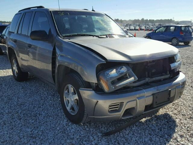 1GNDS13SX52370342 - 2005 CHEVROLET TRAILBLAZE GRAY photo 1