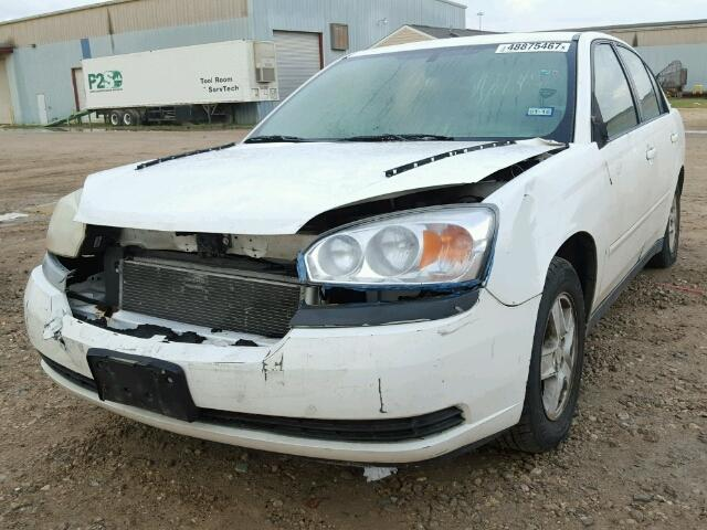 1G1ZT52845F256556 - 2005 CHEVROLET MALIBU LS WHITE photo 2